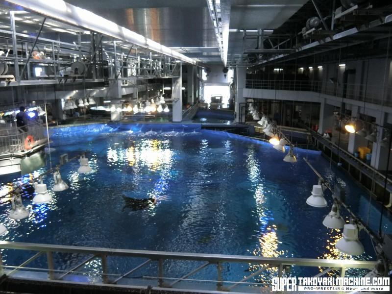 travel_okinawa_2014_2_4022